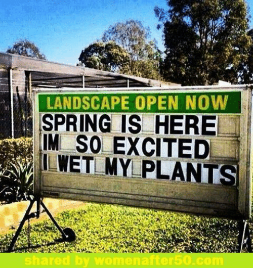 im so excited: LANDSCAPE OPEN NOW  SPRING IS HERE  IM SO EXCITED  ILWET MY PLANTS  hared by womenafter50.com