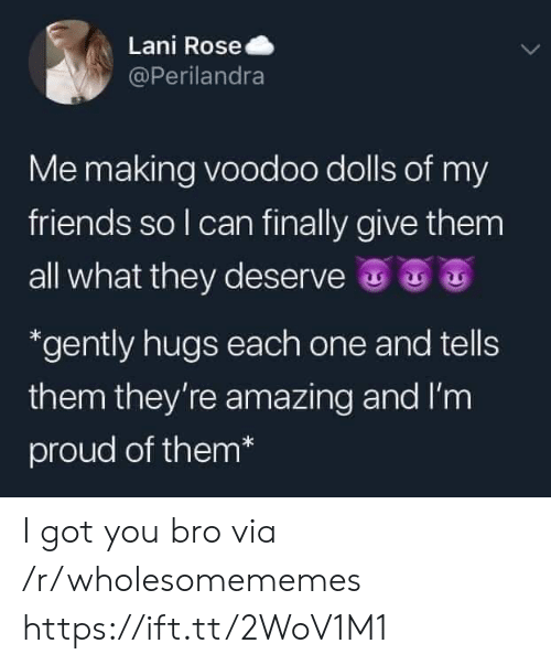 voodoo: Lani Rose  @Perilandra  Me making voodoo dolls of my  friends so I can finally give them  all what they deserve  *gently hugs each one and tells  them they're amazing and I'm  proud of them* I got you bro via /r/wholesomememes https://ift.tt/2WoV1M1