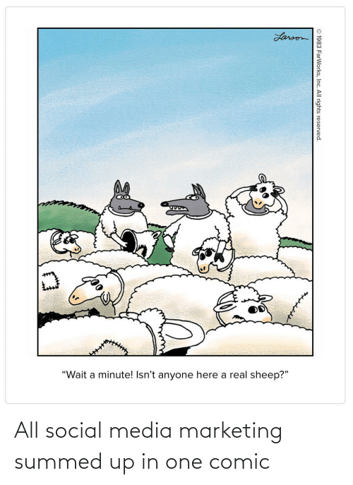 "marketing: Larson  ""Wait a minute! Isn't anyone here a real sheep?""  © 1983 FarWorks, Inc. All rights reserved. All social media marketing summed up in one comic"