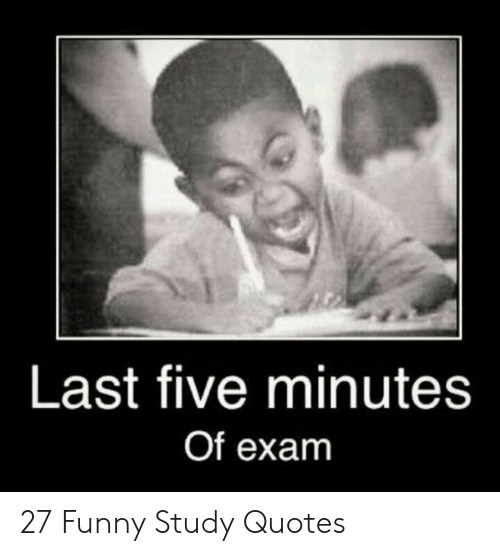 25 Best Memes About Funny Study Quotes Funny Study