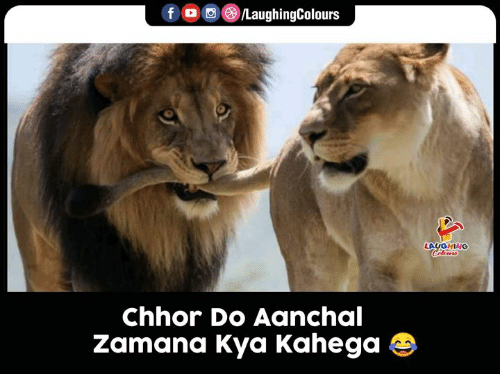 Indianpeoplefacebook, Laughing, and  Kya: LaughingColours  f  LAUGHING  Celows  Chhor Do Aanchal  Zamana Kya Kahega