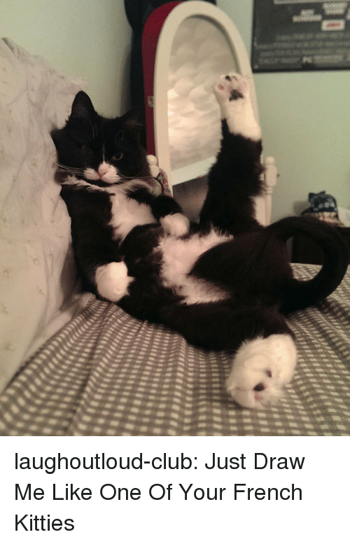 Kitties: laughoutloud-club:  Just Draw Me Like One Of Your French Kitties