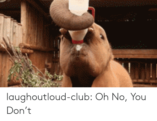 Club, Tumblr, and Blog: laughoutloud-club:  Oh No, You Don't