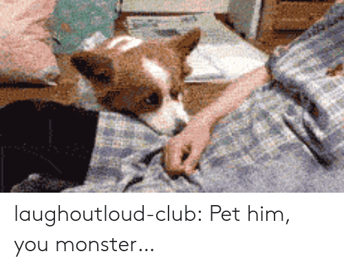 Club, Monster, and Tumblr: laughoutloud-club:  Pet him, you monster…
