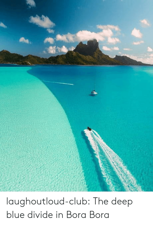 Club, Tumblr, and Blog: laughoutloud-club:  The deep blue divide in Bora Bora
