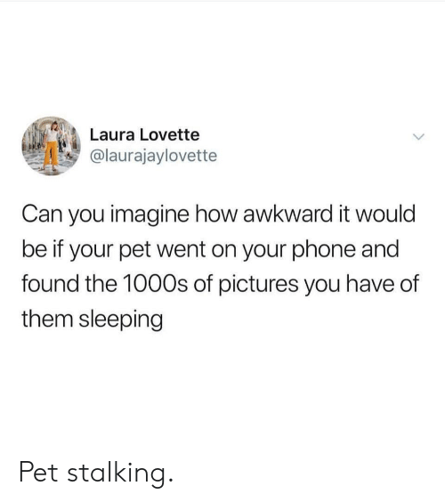 Phone, Stalking, and Awkward: Laura Lovette  @laurajaylovette  Can you imagine how awkward it would  be if your pet went on your phone and  found the 100Os of pictures you have of  them sleeping Pet stalking.