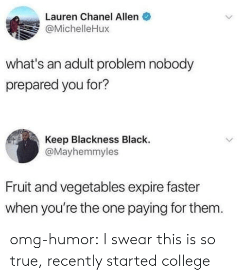 Chanel: Lauren Chanel Allen  @MichelleHux  what's an adult problem nobody  prepared you for?  Keep Blackness Black  @Mayhemmyles  Fruit and vegetables expire faster  when you're the one paying for them omg-humor:  I swear this is so true, recently started college