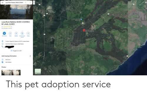 mackenzie: Lava Rock Rabbits NOW COVERE  132  Pāhoa  Lava Tree State  Monument  Lava Rock Rabbits NOW COVERED  132  BY LAVA, SORRY  5.0 ***** (1)  Pet adoption service  Lava Rock Rabbits  NOW COVERED BY.  Leilani Estates  Send to your  Directions  Save  Nearby  Share  phone  13-3331 Kaupili St, Pāhoa, HI 96778, United States  F4C2+R4 Pāhoa, Hawaii, United States  CRES  Isaac  Hale Park  O Suggest an edit  8-2019  Malama-  Forest Reserve  Add missing information  137  Add hours  Add website  MacKenzie  State  Recreation  Area  Photos  Google  Map This pet adoption service