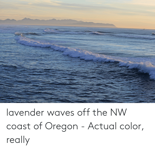 Waves: lavender waves off the NW coast of Oregon - Actual color, really