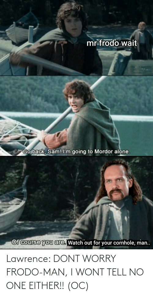 Lawrence: Lawrence: DONT WORRY FRODO-MAN, I WONT TELL NO ONE EITHER!! (OC)