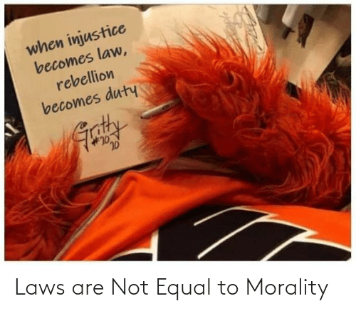 Are Not: Laws are Not Equal to Morality