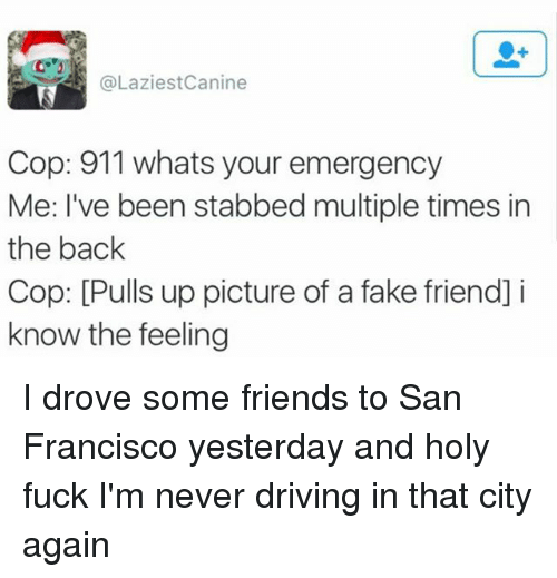 Copping: @LaziestCanine  Cop: 911 whats your emergency  Me: I've been stabbed multiple times in  the back  Cop: [Pulls up picture of a fake friend] i  know the feeling I drove some friends to San Francisco yesterday and holy fuck I'm never driving in that city again