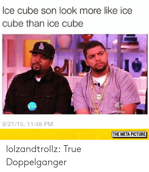 Doppelganger, Ice Cube, and True: lce cube son look more like ice  cube than ice cube  i4  EW  8/21/15, 11:48 PM  THE META PICTURE lolzandtrollz:  True Doppelganger