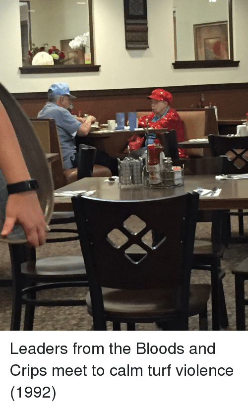 Bloods: Leaders from the Bloods and Crips meet to calm turf violence (1992)