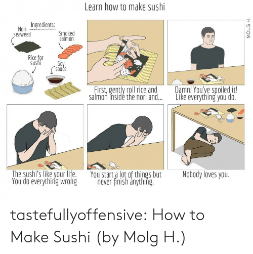 Nobody Loves: Learn how to make sushi  Ingredients:  Smoked  salmon  Nori  seaweed  Rice for  us hi  Soy  Saute  Damn! You've spoiled it!  Like everything you do.  First, gently roll rice and  salmon insidé the nori and...  The sushi's like your life.  You do everything wrong  You start a lot of things but  never finish anything.  Nobody loves you.  MOLG H tastefullyoffensive:  How to Make Sushi (by Molg H.)