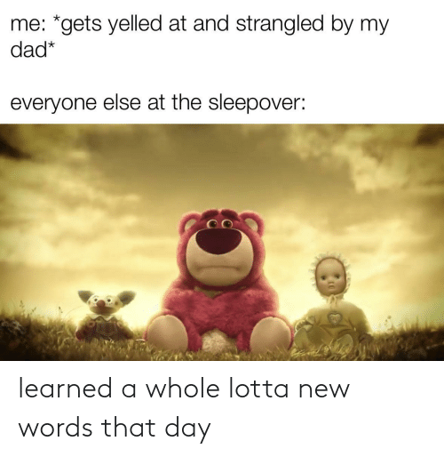 learned: learned a whole lotta new words that day