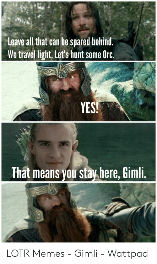 funny lotr: Leave all that can be spared behind.  We travel light. Let's hunt some Orc,  YES  That means you stay here, Gimli LOTR Memes - Gimli - Wattpad
