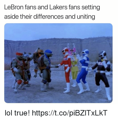 Funny, Los Angeles Lakers, and Lol: LeBron fans and Lakers fans setting  aside their differences and uniting lol true! https://t.co/piBZlTxLkT