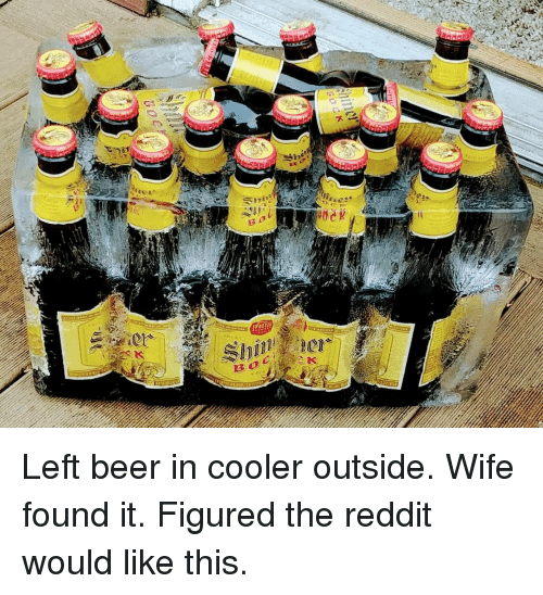 Beer, Reddit, and Wife: Left beer in cooler outside. Wife found it. Figured the reddit would like this.