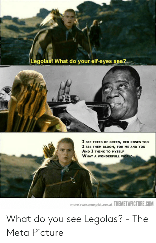 funny lotr: Legolas! What do your elf-eyes se  I SEE TREES OF GREEN, RED ROSES TOO  I SEE THEM BLOOM, FOR ME AND YOU  AND I THINK TO MYSELF  WHAT A WONDERFULL WORLD  more awesome pictures at THEMETAPICTURE.COM What do you see Legolas? - The Meta Picture