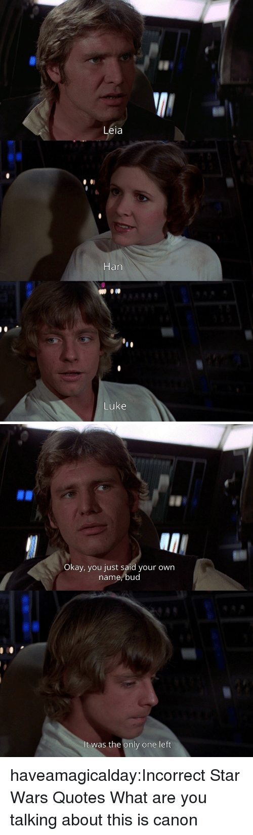 Star Wars, Tumblr, and Blog: Leia  Han  Luke   Okay, you just said your own  name,bud  It was the only one left haveamagicalday:Incorrect Star Wars Quotes  What are you talking about this is canon