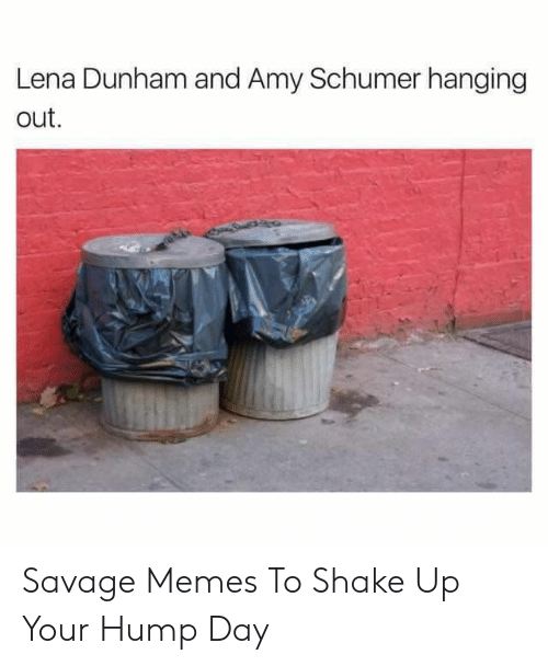Amy Schumer, Hump Day, and Memes: Lena Dunham and Amy Schumer hanging  out Savage Memes To Shake Up Your Hump Day