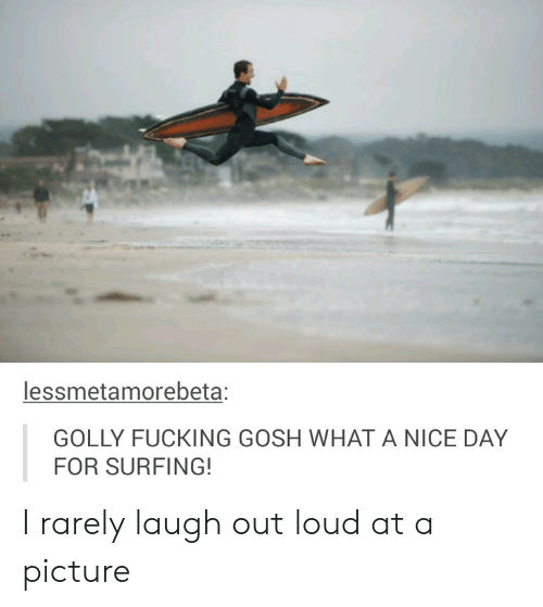 Golly: lessmetamorebeta;  GOLLY FUCKING GOSH WHAT A NICE DAY  FOR SURFING! I rarely laugh out loud at a picture