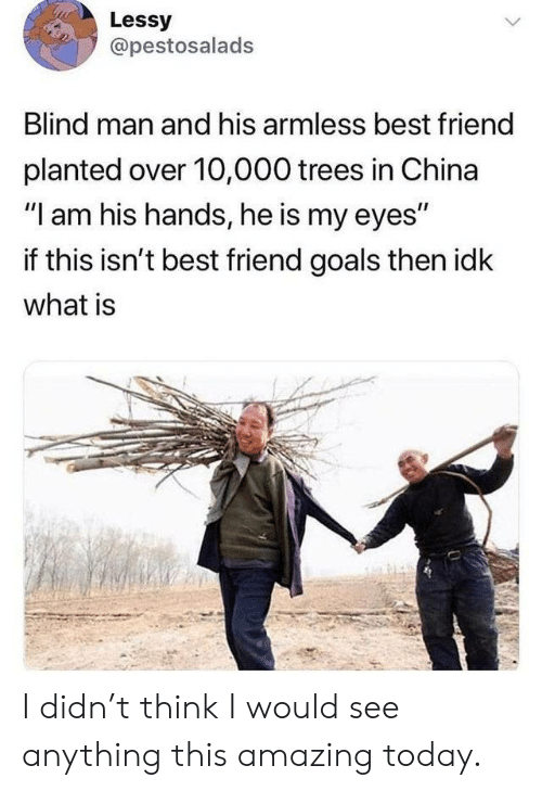 "Best Friend, Goals, and China: Lessy  @pestosalads  Blind man and his armless best friend  planted over 10,000 trees in China  ""I am his hands, he is my eyes""  if this isn't best friend goals then idk  what is I didn't think I would see anything this amazing today."