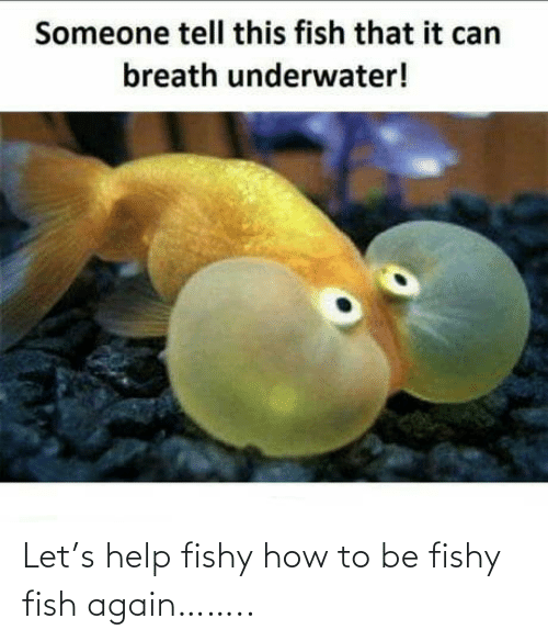 How To: Let's help fishy how to be fishy fish again……..