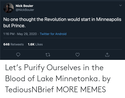Let: Let's Purify Ourselves in the Blood of Lake Minnetonka. by TediousNBrief MORE MEMES