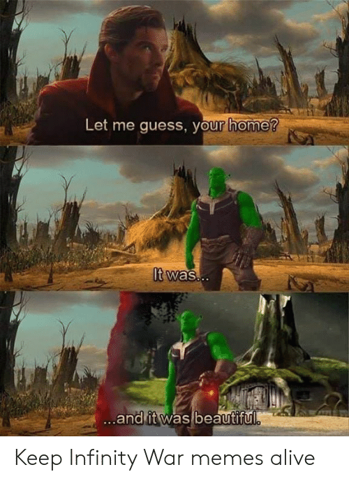 Dank Memes: Let me guess, your home?  It was..  ...and it was beautiful Keep Infinity War memes alive