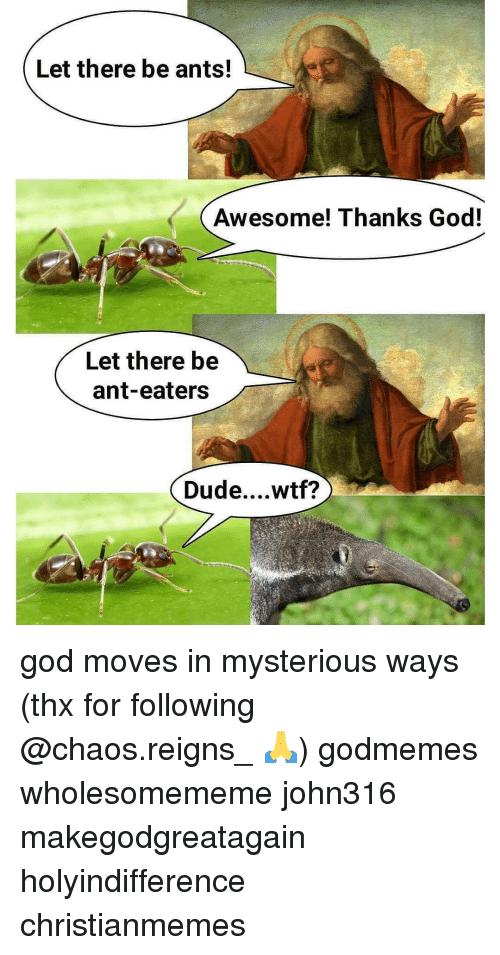 chaos reigns: Let there be ants!  Awesome! Thanks God!  Let there be  ant-eaters  Dude....wtf? god moves in mysterious ways (thx for following @chaos.reigns_ 🙏) godmemes wholesomememe john316 makegodgreatagain holyindifference christianmemes