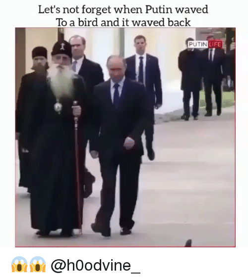 Life, Putin, and Dank Memes: Let's not forget when Putin waved  To a bird and it waved back  PUTIN  LIFE 😱😱 @h0odvine_