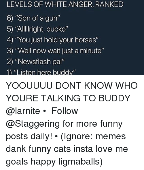 "Cats, Dank, and Funny: LEVELS OF WHITE ANGER, RANKED  6) ""Son of a gun'""  5) ""AlllIright, bucko""  4) ""You just hold your horses""  3) ""Well now wait just a minute""  2) ""Newsflash pal""  1) ""Listen here buddy"" YOOUUUU DONT KNOW WHO YOURE TALKING TO BUDDY @larnite • ➫➫➫ Follow @Staggering for more funny posts daily! • (Ignore: memes dank funny cats insta love me goals happy ligmaballs)"