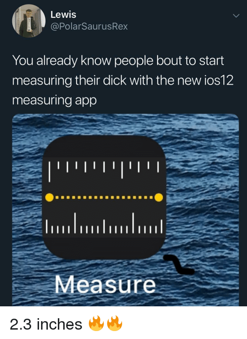 Memes, Dick, and 🤖: Lewis  @PolarSaurusRex  You already know people bout to start  measuring their dick with the new ios12  measuring app  Measure 2.3 inches 🔥🔥