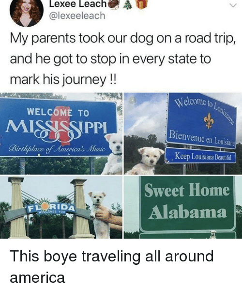 sweet home alabama: @lexeeleach  My parents took our dog on a road trip,  and he got to stop in every state to  mark his journey!!  Welcome to  OLo  WELCOME TO  Bienvenue en Louisiane  Keep Louisiana Beautiful  Sweet Home  Alabama  RIDA  S YoU This boye traveling all around america
