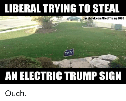 Memes, Trump, and 🤖: LIBERAL TRYING TO STEAL  facehook.com/EleotTrum p2020  AN ELECTRIC TRUMP SIGN Ouch.