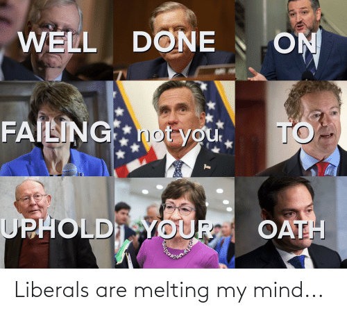 melting: Liberals are melting my mind...