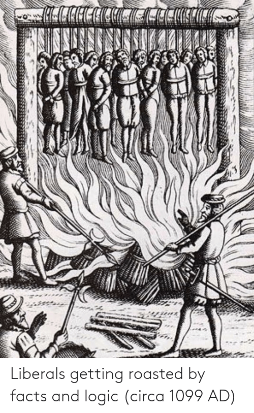 Getting Roasted: Liberals getting roasted by facts and logic (circa 1099 AD)