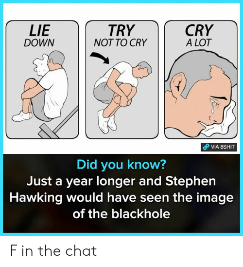 Memes, Stephen, and Stephen Hawking: LIE  DOWN  TRY  NOT TO CRY  CRY  A LOT  Did you know  Just a year longer and Stephen  Hawking would have seen the image  of the blackhole F in the chat