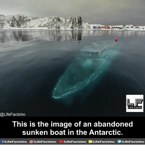 antarctic: LIFE FACTS  @LifeFactsInc  This is the image of an abandoned  sunken boat in the Antarctic  sinc acts ILifeFactslnc  sinc f/Life FactsInc sinc ILifeF