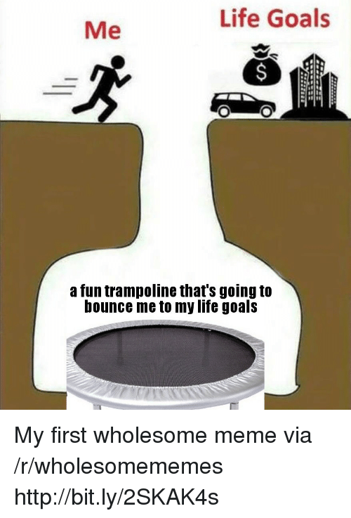 Trampoline: Life Goals  Me  a fun trampoline that's going to  bounce me to my life goals My first wholesome meme via /r/wholesomememes http://bit.ly/2SKAK4s