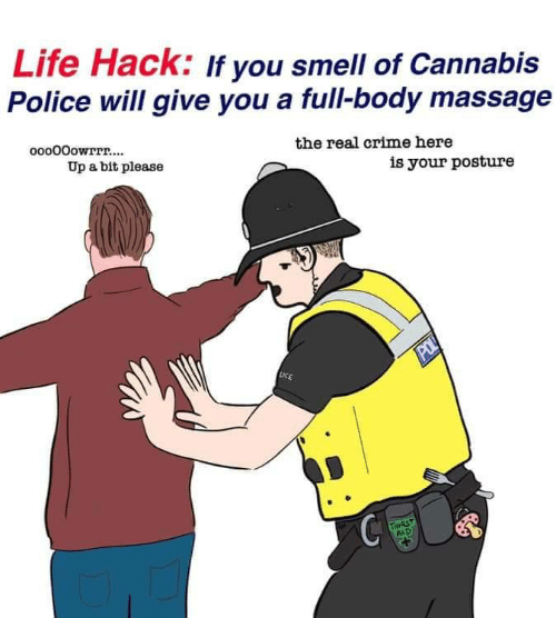 Massage: Life Hack: If you smell of Cannabis  Police will give you a full-body massage  ooo00owrrr....  the real crime here  Up a bit please  is your posture  POL  LICE  THIRST  AID