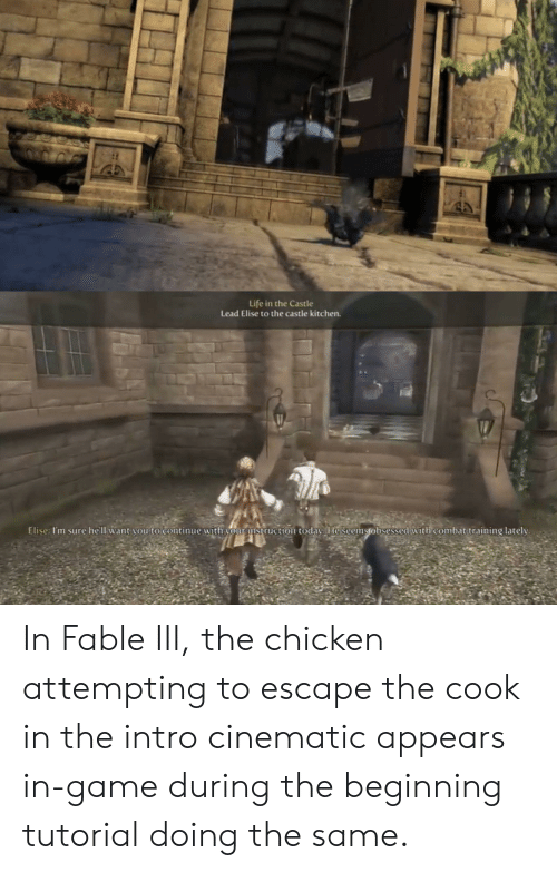 combat training: Life in the Castle  Lead Elise to the castle kitchen.  Elise: I'm sure he'll want vou to continue with vourmstruction todav. He seemstobsessed with combat training lately In Fable III, the chicken attempting to escape the cook in the intro cinematic appears in-game during the beginning tutorial doing the same.