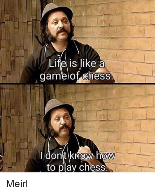 Life, Chess, and How To: Life is like a  gamelof chess.  I dont know how  to play chess  0  0 Meirl