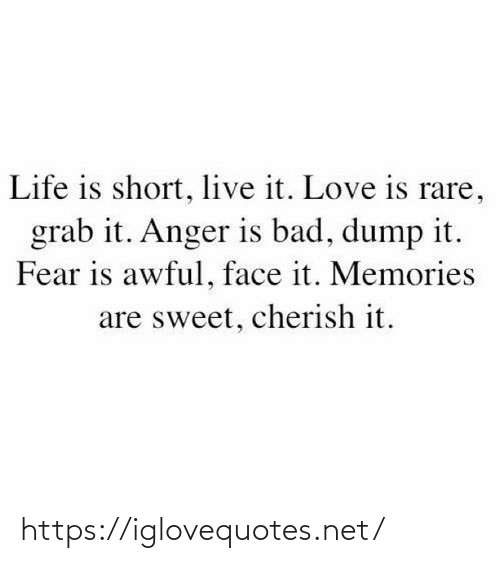 grab: Life is short, live it. Love is rare,  grab it. Anger is bad, dump it.  Fear is awful, face it. Memories  are sweet, cherish it. https://iglovequotes.net/
