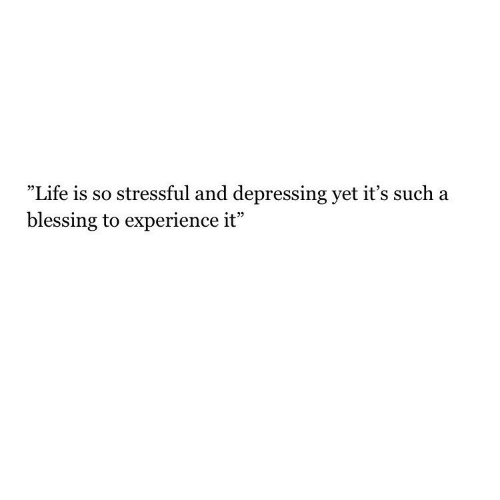 """Life, Experience, and Depressing: """"Life is so stressful and depressing yet it's such a  blessing to experience it"""""""