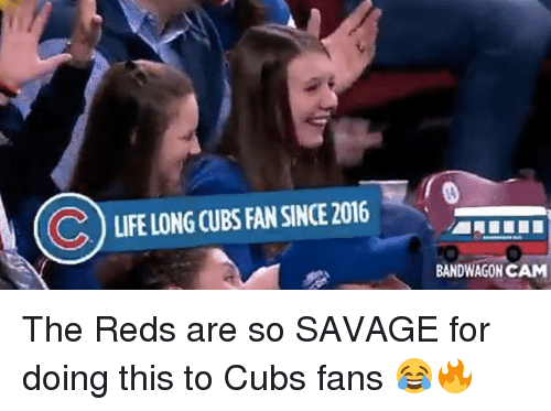 Mlb, Savage, and Cubs: LIFELONG CUBS AN SNCE 2016  BANDWAGON CAM The Reds are so SAVAGE for doing this to Cubs fans 😂🔥