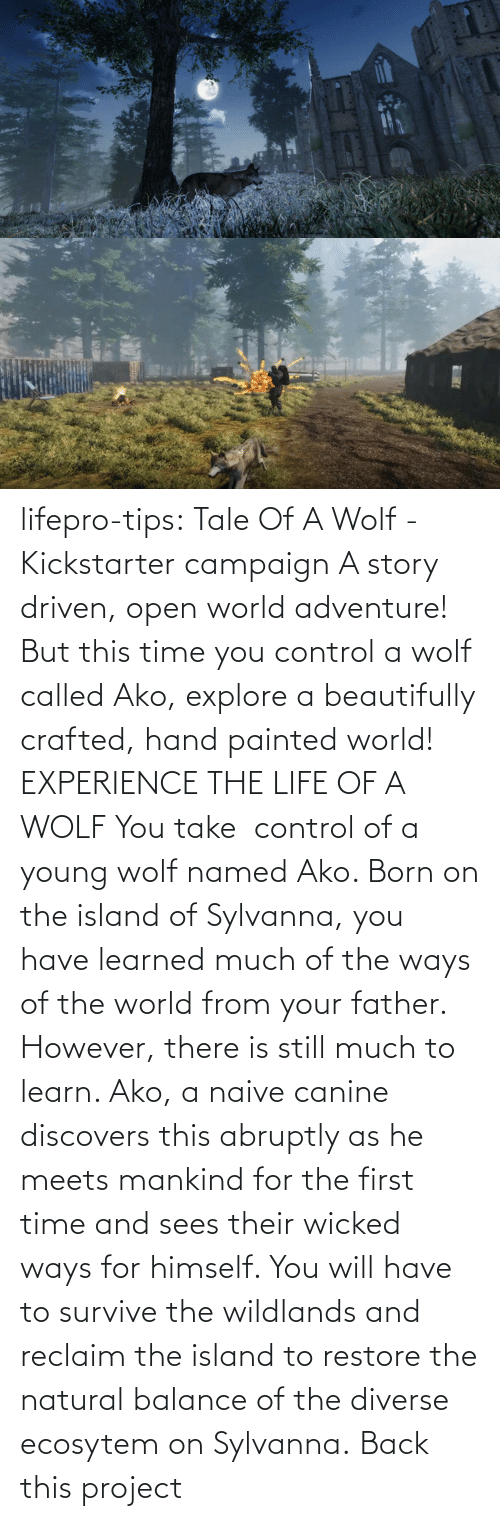 Experience: lifepro-tips: Tale Of A Wolf - Kickstarter campaign  A story driven, open world adventure! But this time you control a wolf  called Ako, explore a beautifully crafted, hand painted world!  EXPERIENCE THE LIFE OF A WOLF You take  control of a young wolf named Ako. Born on the island  of Sylvanna, you have learned much of the ways of the world from your  father. However, there is still much to learn. Ako, a naive canine  discovers this abruptly as he meets mankind for the first time and sees  their wicked ways for himself. You will have to survive the wildlands  and reclaim the island to restore the natural balance of the diverse  ecosytem on Sylvanna.   Back this project