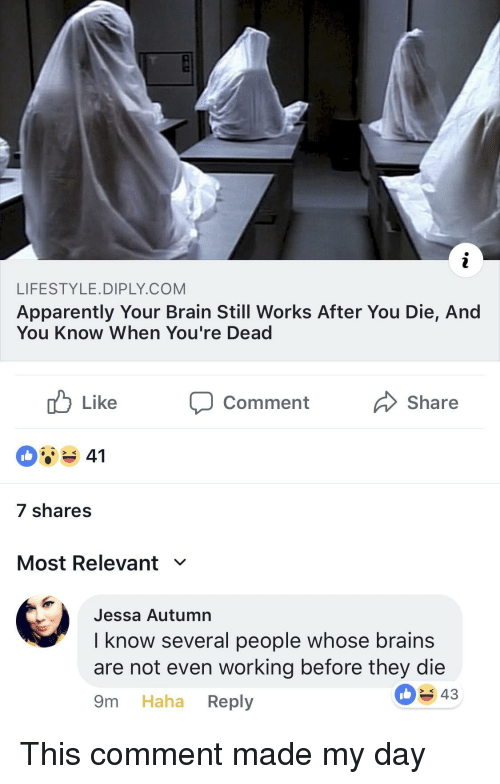 Apparently, Brains, and Brain: LIFESTYLE.DIPLY.COM  Apparently Your Brain Still Works After You Die, And  You Know When You're Dead  Comment  Share  7 shares  Most Relevant ﹀  Jessa Autumn  I know several people whose brains  are not even working before they die  9m Haha Reply  43 This comment made my day